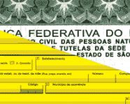 Declaração de Nascido Vivo não substitui registro civil de nascimento, alerta ministério
