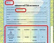 Novas certidões de Registro Civil no Brasil